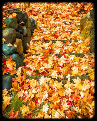 Harvest Photograph - Fall Down The Stairs by LeeAnn McLaneGoetz McLaneGoetzStudioLLCcom