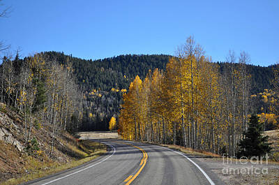 Photograph - Fall Drive by Anjanette Douglas