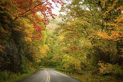 Photograph - Fall Drive On The Blue Ridge Parkway by Terry DeLuco