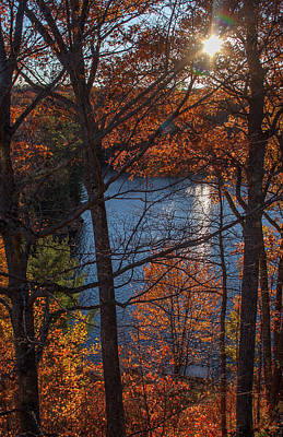 Photograph - Fall Evening Sun by Margaret Sarah Pardy