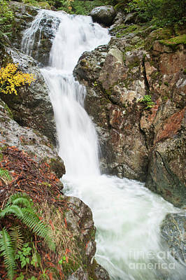 Photograph - Fall Falls by Rod Wiens