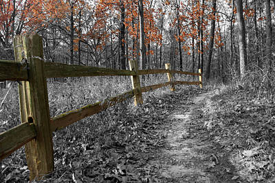 Photograph - Fall Fence by Dylan Punke