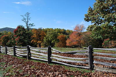 Art Print featuring the photograph Fall Fence by Eric Liller