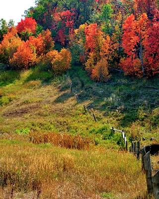 Photograph - Fall Fence Line by Jerry Sodorff