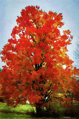 Photograph - Fall Fling Tree by Roberta Byram