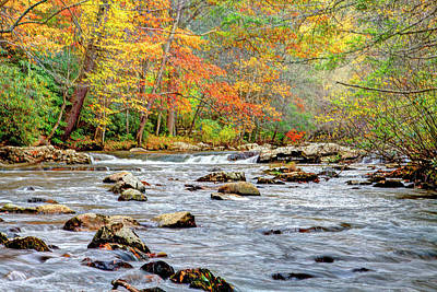 Photograph - Fall Flow by Dale R Carlson