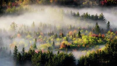 Photograph - Fall Fog by Brad Wenskoski