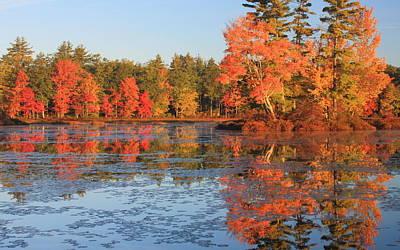 Photograph - Fall Foliage At Harvard Pond by John Burk