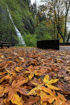 Fall Foliage At Horsetail Falls Art Print by David Gn