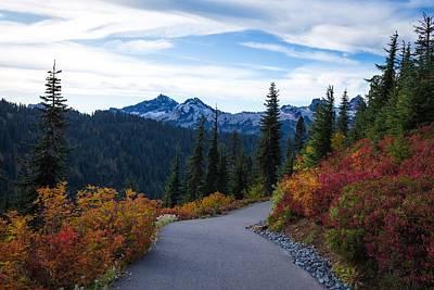 Photograph - Fall Foliage At Mount Rainier by Lynn Hopwood