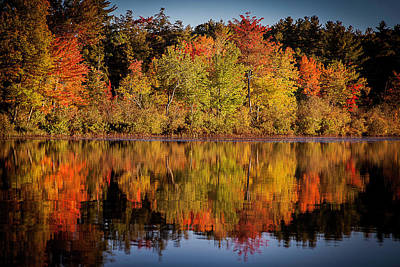 Photograph - Fall Foliage by Benjamin Dahl