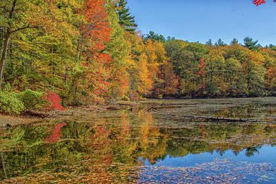 Photograph - Fall Foliage by Brian MacLean