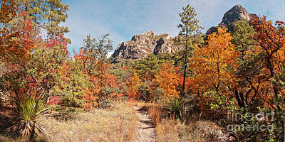 Photograph - Fall Foliage Explosion At Mckittrick Canyon - Guadalupe Mountains National Park West Texas by Silvio Ligutti