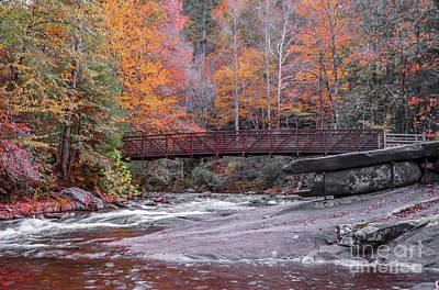 Photograph - Fall Foliage Footbridge by Tom Claud