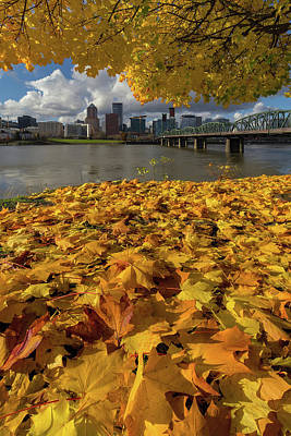 Photograph - Fall Foliage In Portland Oregon City by David Gn