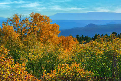Photograph - Fall Foliage - Mountain Vista by Nikolyn McAspens - Fall FoliageDonald