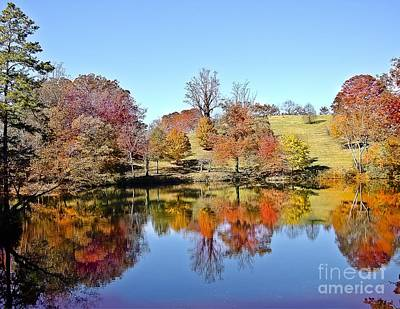 Mellow Yellow - Fall Foliage N Carolina by Johnnie Stanfield
