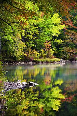 Rollos Photograph - Fall Foliage Reflection by Christina Rollo