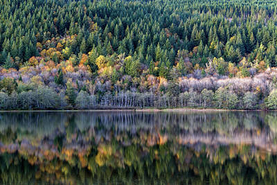 Harrison Hot Springs Wall Art - Photograph - Fall Foliage Reflections On Deer Lake by Michael Russell