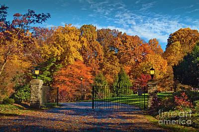 Photograph - Fall Foliage Trees Beautiful Color by David Zanzinger