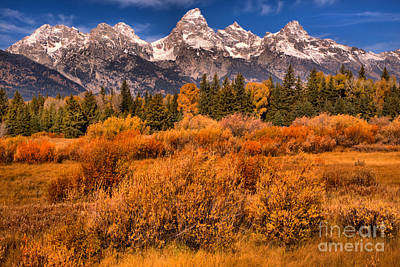 Photograph - Fall Foliage Under The Tetons by Adam Jewell