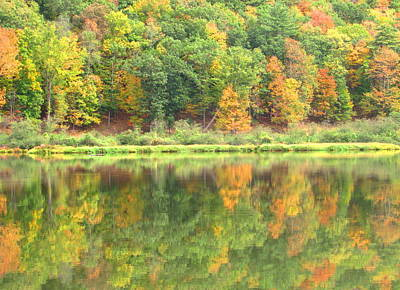 Fall Forest Reflection Art Print by Joshua Bales