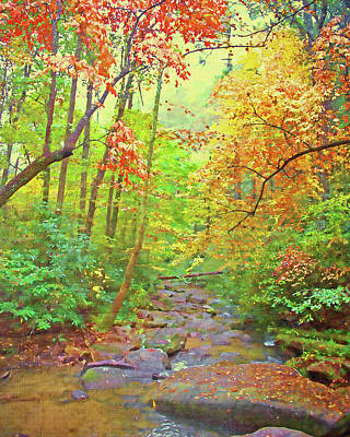Photograph - Fall Forest Stream by Larry Bishop