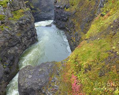 Photograph - Fall Foss by Barbie Corbett-Newmin