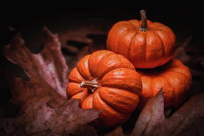 Pumpkin Photograph - Fall Fruits by Tom Mc Nemar