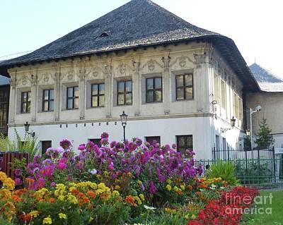 Photograph - Fall Garden In Bucharest, Romania by Barbie Corbett-Newmin