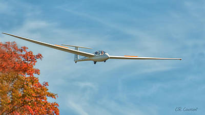 Photograph - Fall Gliding by CR Courson
