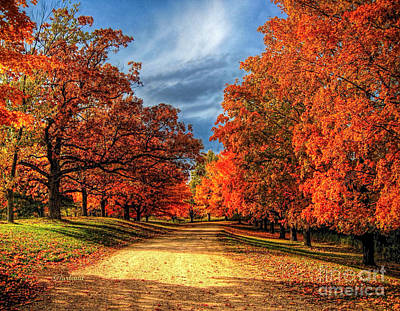 Fall Golden Road Art Print by Garland Johnson
