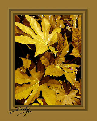 Becky Photograph - Fall Golds Yellow Leaves With Printed Mat Around The Overlapping Leaves Becky Joy by Becky Joy