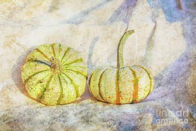 Digital Art - Fall Gourds On Cloth by Randy Steele