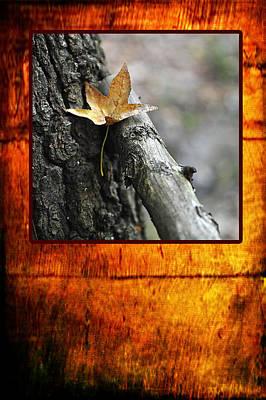 Photograph - Fall Greeting by Randi Grace Nilsberg
