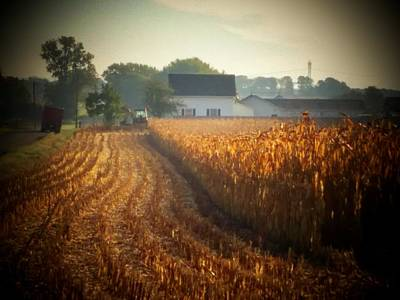 Photograph - Fall Harvest by Michael L Kimble