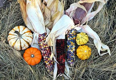 Photograph - Fall Harvest On Hay by Sheila Brown