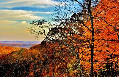 Photograph - Fall Horizon by Michelle McPhillips