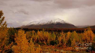 Photograph - Fall In Alaska by Lennie Malvone