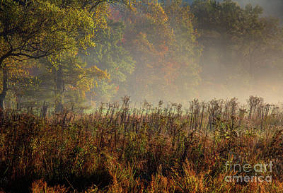 Art Print featuring the photograph Fall In Cades Cove by Douglas Stucky