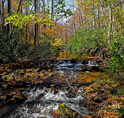 Photograph - Fall In Cataloochee by Paul Mashburn