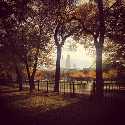 Skylines Wall Art - Photograph - Fall In Chicago by Sara N