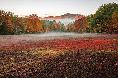 Photograph - Fall In Chocorua by Robert Clifford