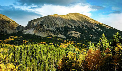 Photograph - Fall In Colorado 2 by Elijah Knight