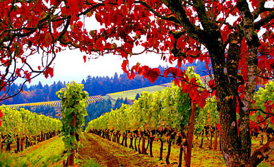 Wine Country Photograph - Fall In Dundee by Margaret Hood