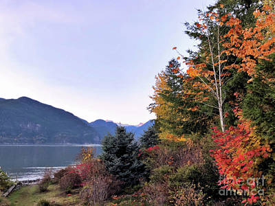 Photograph - Fall In Furry Creek by Victor K