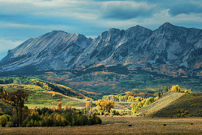 Photograph - Fall In Gunnison County by Dana Sohr