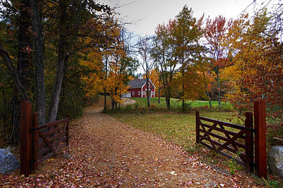 Photograph - Fall In Hollis by Dan Poirier