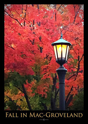 Photograph - Fall In Mac-groveland by Tim Nyberg