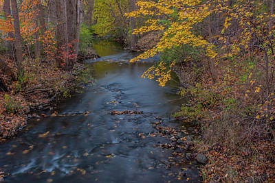 Photograph - Fall In Michigan 2 by Pravin Sitaraman